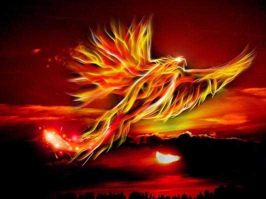 phoenix-500469_640