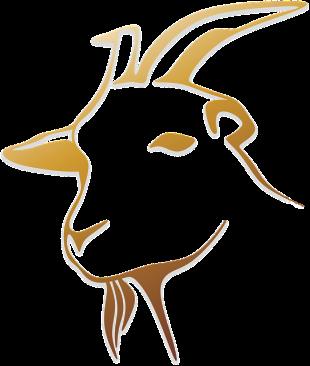 goat-1484988_640