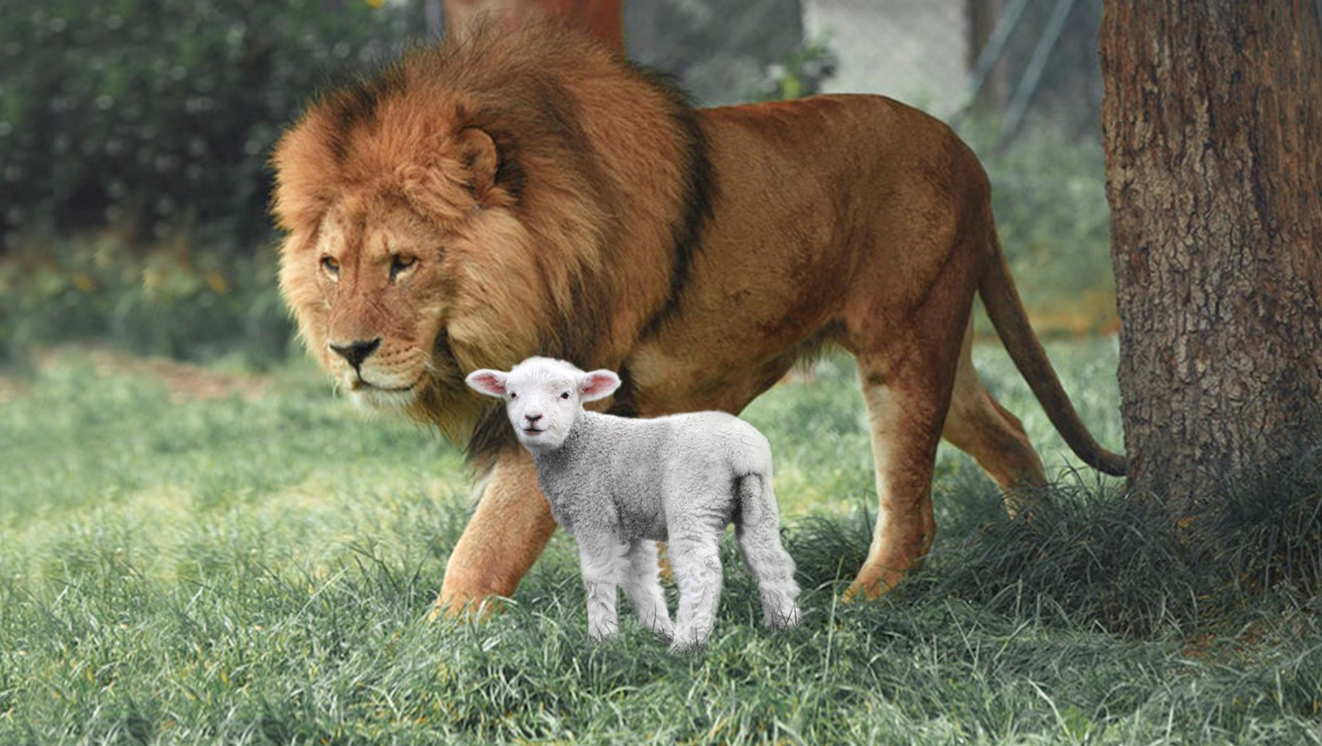 Transits – February 23 to March 23, 2020: In Like a Lamb, Out Like a Lion